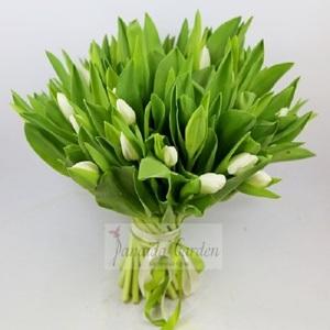Букет цветов «Белые тюльпаны»